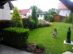Záhrada 008